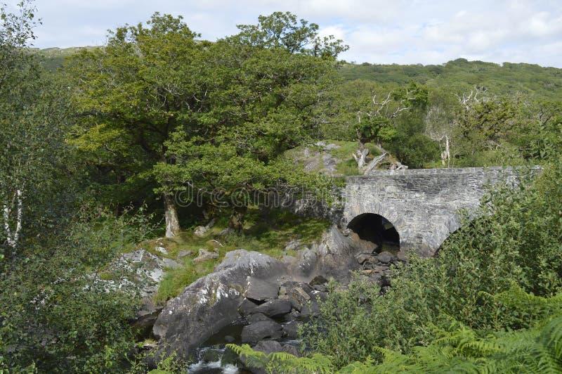 Ponte e fiume sull'anello di Kerry, Irlanda fotografie stock libere da diritti