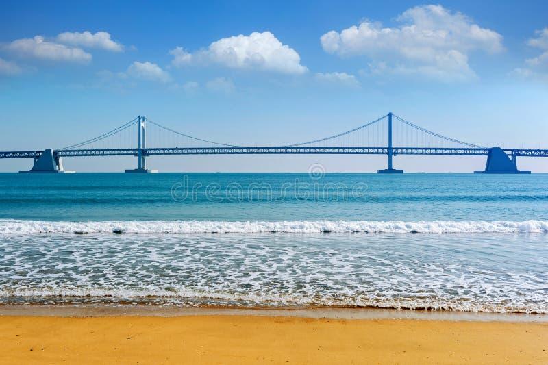 Ponte e Haeundae de Gwangan em Busan, Coreia imagens de stock royalty free