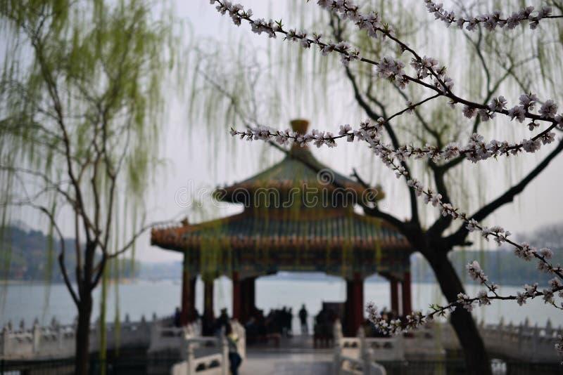 Ponte e lago a Pechino Pechino, CINA fotografie stock libere da diritti