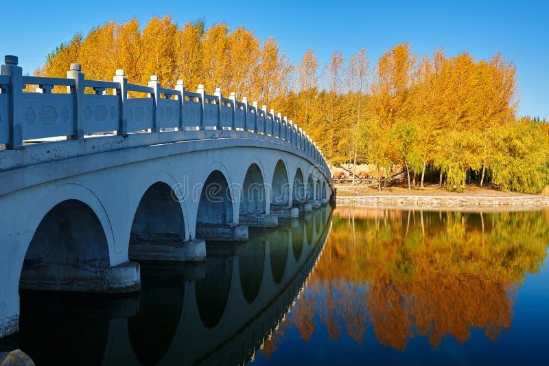 A ponte e o cenário outonal imagem de stock royalty free