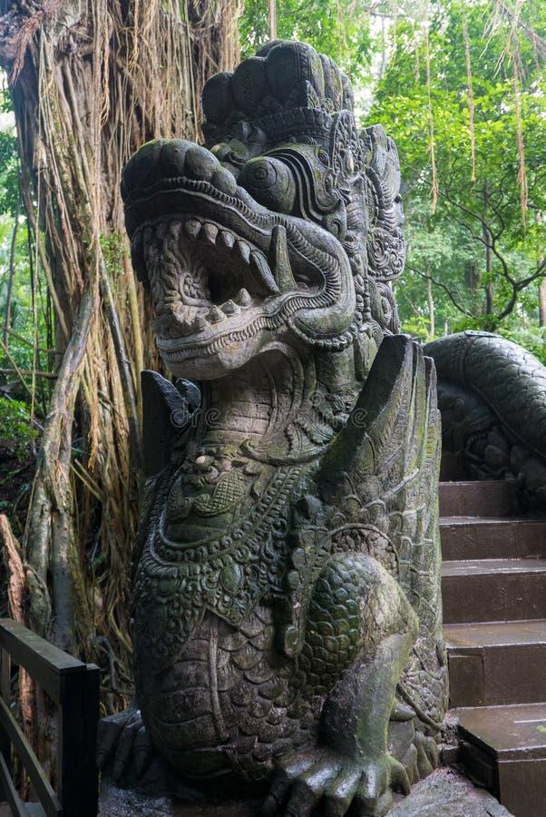 Ponte e selva velhas no macaco sagrado Forest Sanctuary, Ubu foto de stock