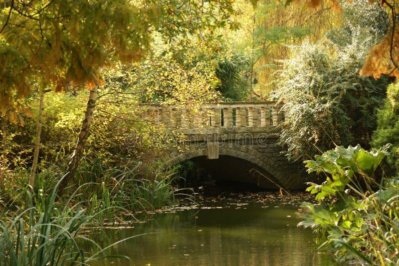 Ponte em cores do outono foto de stock