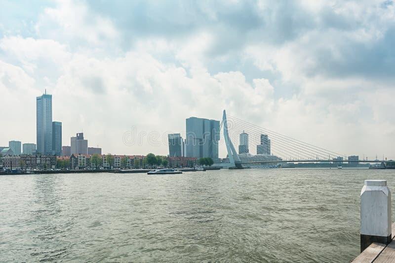 A ponte Erasmusbrug igualmente conhecido como a ponte da cisne em Rotterdam foto de stock royalty free