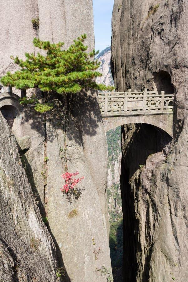 Ponte feericamente na montanha do amarelo do Mt Huangshan Localizado na província de Anhui, Huangshan é uma das montanhas as mais imagens de stock
