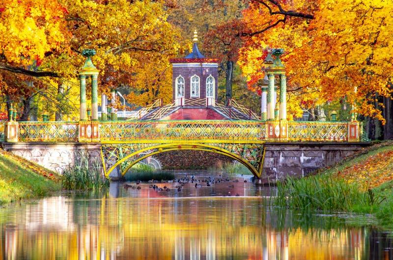 Ponte fronteiriça e pontes chinesas no parque Alexander no outono, Pushkin Tsarskoe Selo, São Petersburgo, Rússia fotos de stock