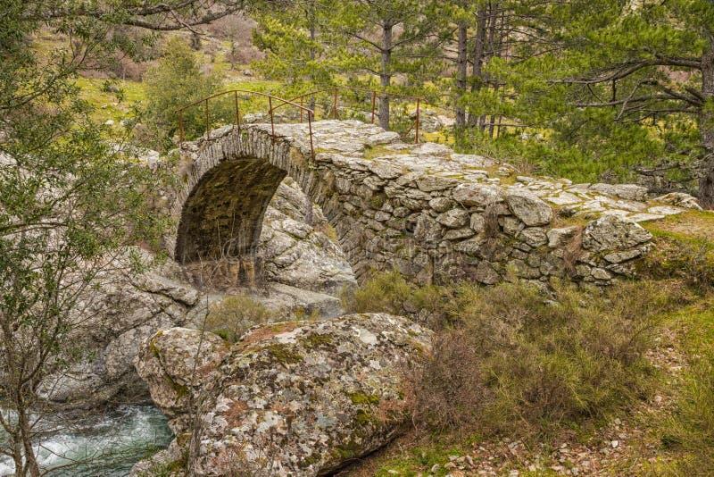 Ponte Genoese antiga sobre o rio em Córsega fotografia de stock