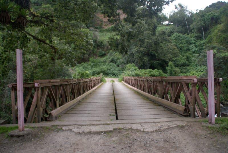 Ponte I del metallo fotografia stock libera da diritti