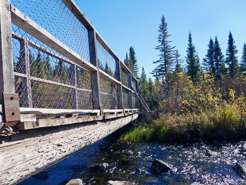 Ponte impressionante sobre a água corrente na queda foto de stock