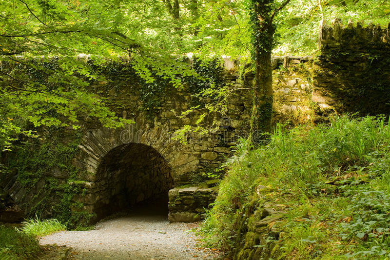 Ponte medieval na floresta fotos de stock royalty free
