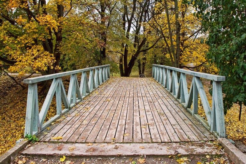 Ponte na floresta do outono fotos de stock royalty free