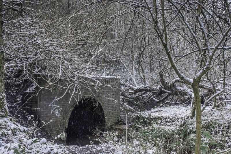 Ponte na floresta no dia de inverno nevado fotos de stock