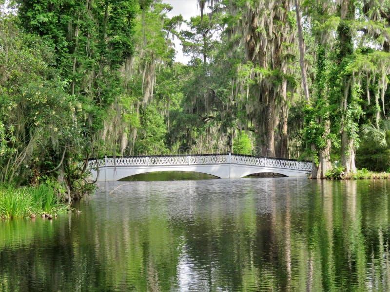 Ponte na plantação da magnólia em Charleston, SC imagem de stock