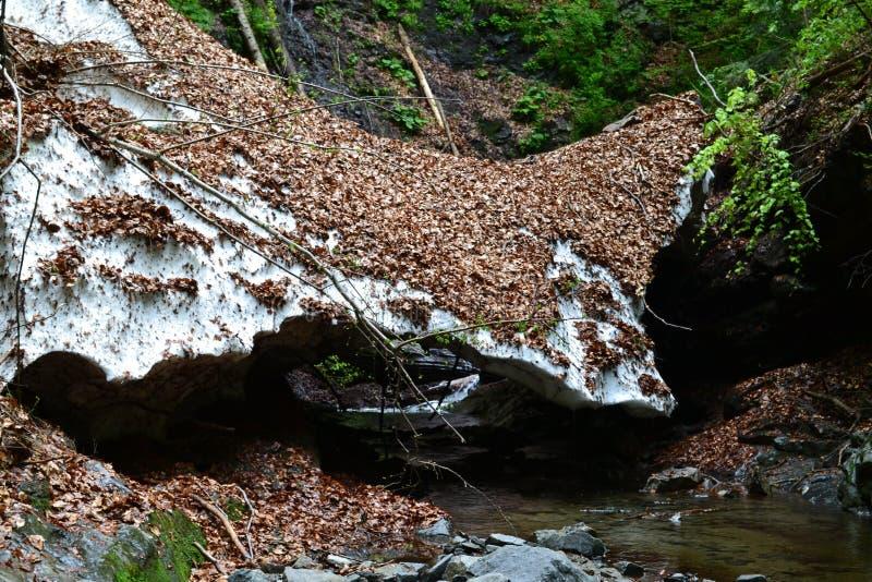 Ponte natural da neve imagens de stock