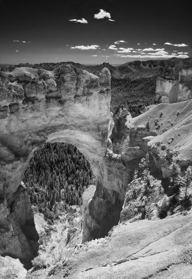 Ponte naturale di stupore nel monocromio fotografia stock libera da diritti