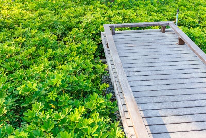 Ponte nel giardino immagini stock
