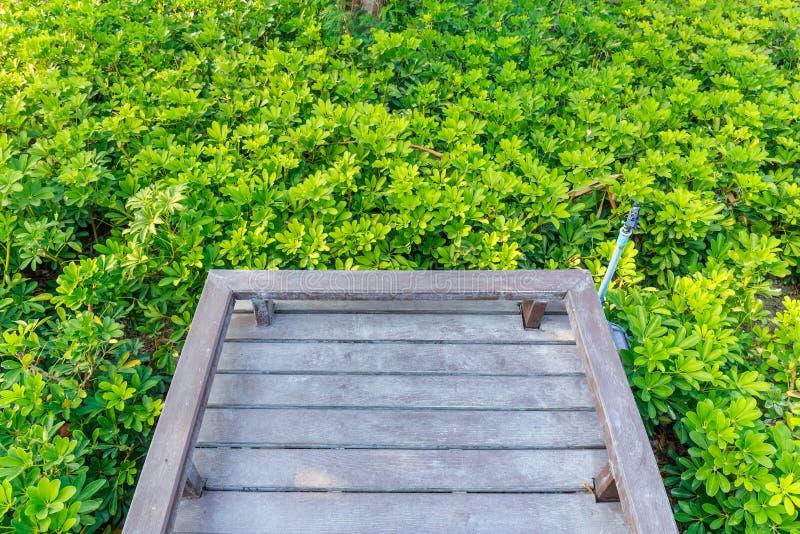 Ponte nel giardino immagini stock libere da diritti