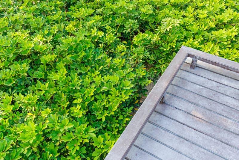 Ponte nel giardino immagine stock