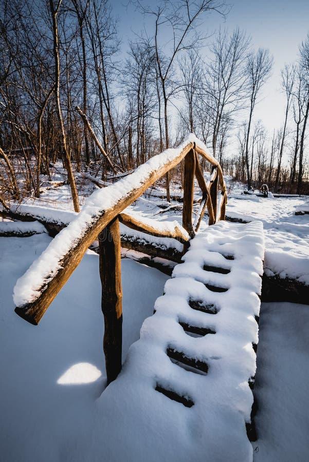 Ponte nevoso di legno nella foresta sopra l'albero rotto fotografia stock libera da diritti