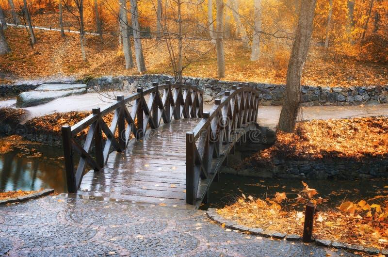 Ponte no parque do outono fotos de stock royalty free