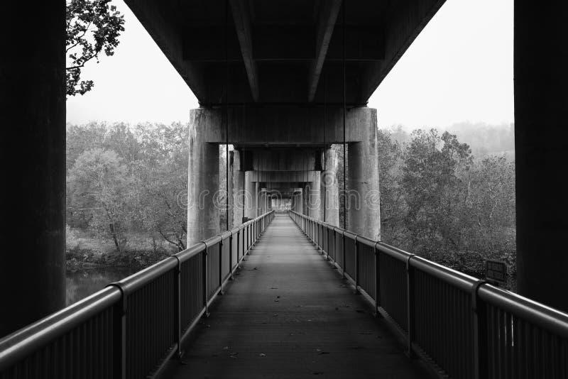 Ponte pedonale sopra James River, su Ridge Parkway blu nella Virginia fotografia stock libera da diritti