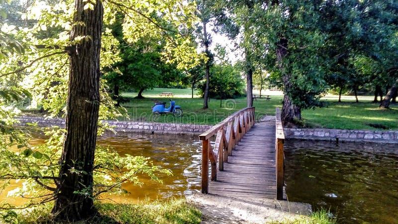 Ponte pequena no lago Tatai_cseke fotos de stock royalty free