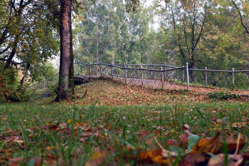 Ponte pequena no parque do outono fotografia de stock royalty free