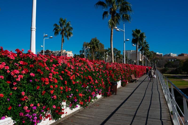 Ponte Puente de Las Flores dei fiori immagine stock libera da diritti