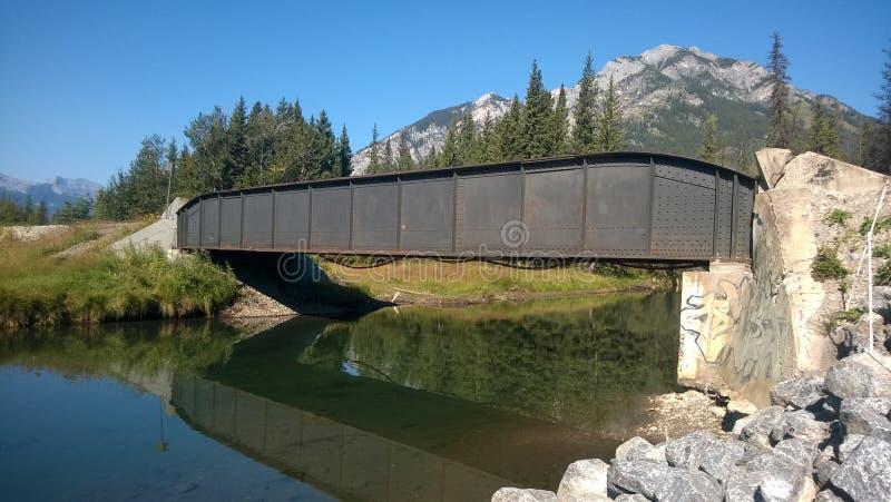 Ponte Railway em montanhas rochosas fotografia de stock royalty free