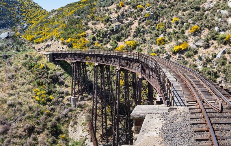 Ponte Railway no desfiladeiro Nova Zelândia de Taieri fotografia de stock