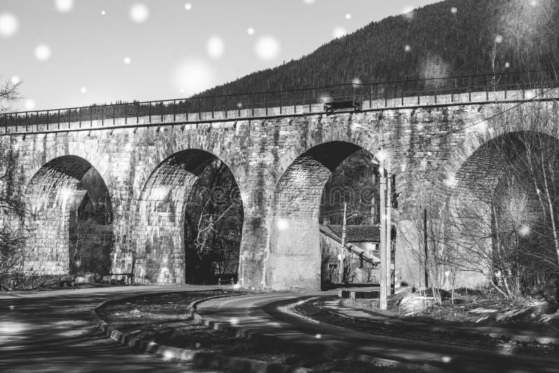 Ponte railway pitoresca velha nas montanhas Carpathian Oriental expresse imagens de stock royalty free