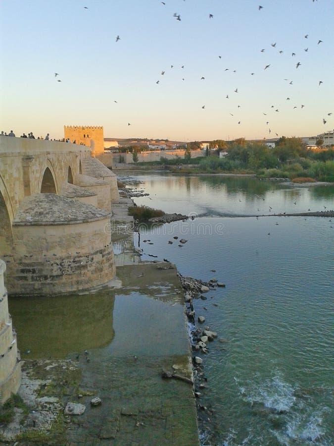 Ponte romana em Córdova fotografia de stock