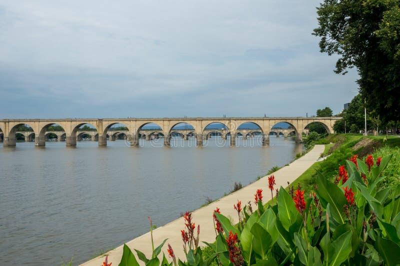 Ponte sobre o rio com as flores no primeiro plano imagens de stock royalty free