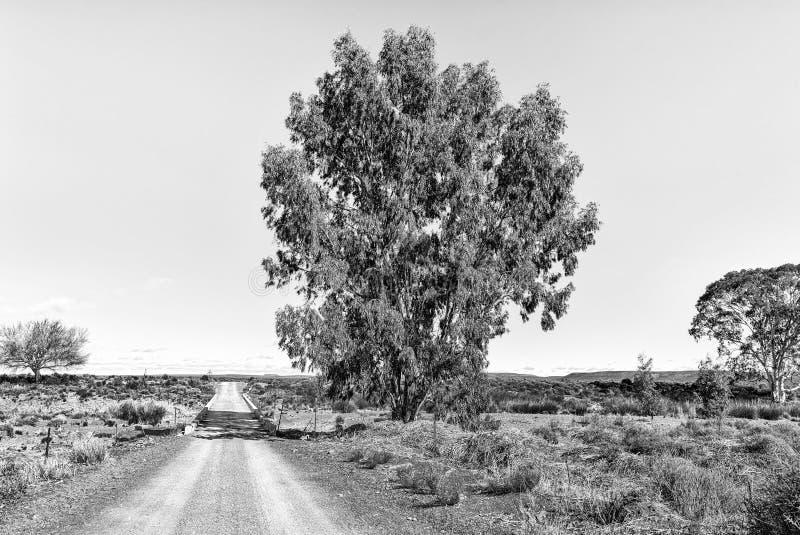 Ponte sobre o rio de Sak na estrada R356 perto de Fraserburg monocromático imagens de stock