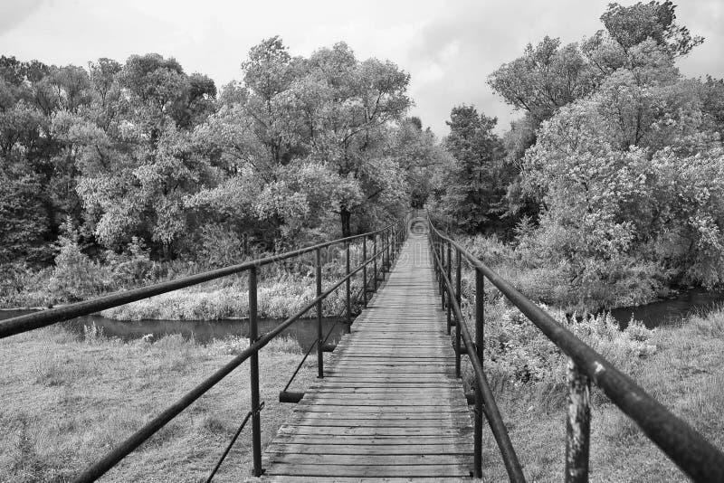Ponte sobre um rio em preto e branco foto de stock royalty free