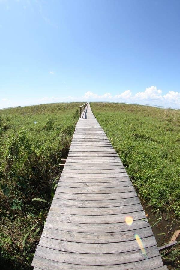 Ponte sopra il canale navigabile con erba fotografia stock