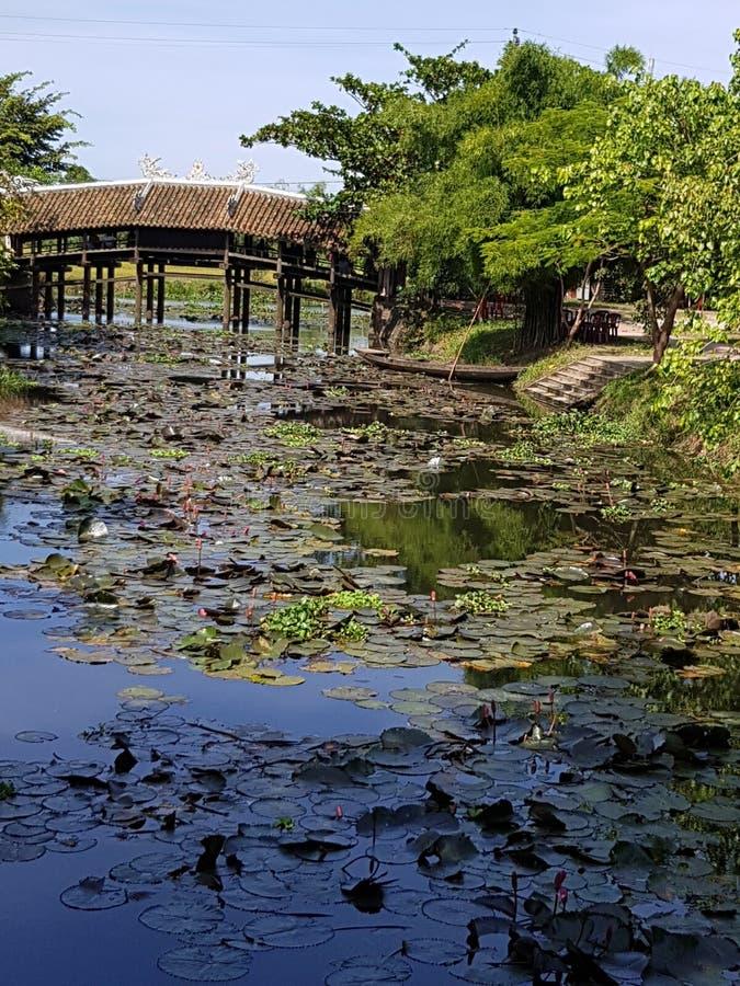 Ponte sopra il fiume locale Vietnam del villaggio fotografia stock libera da diritti
