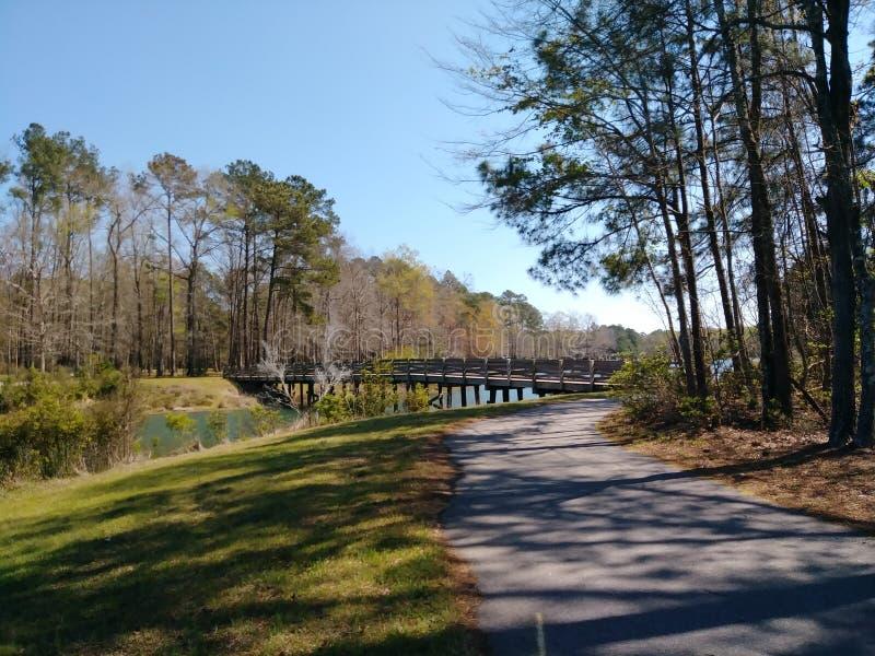 Ponte sopra il lago immagini stock