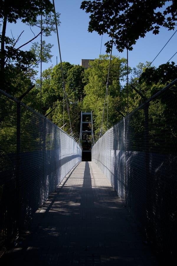 Ponte sospeso a Cornell in Sun immagini stock libere da diritti