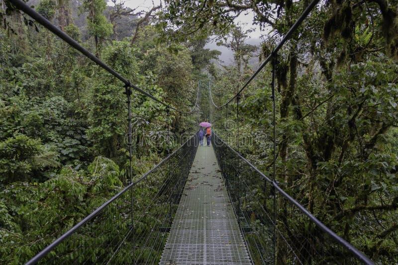 Ponte sospeso in Monteverde Costa Rica fotografie stock libere da diritti