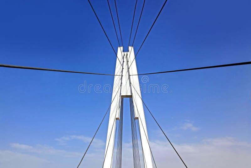 Ponte strallato del pilone fotografia stock libera da diritti