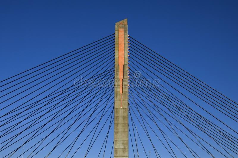 Ponte strallato, Martinus Nijhoffbrug immagine stock