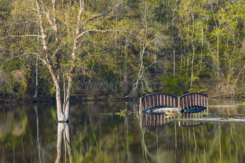 Ponte subaquática em Rebecca Lake Park fotos de stock