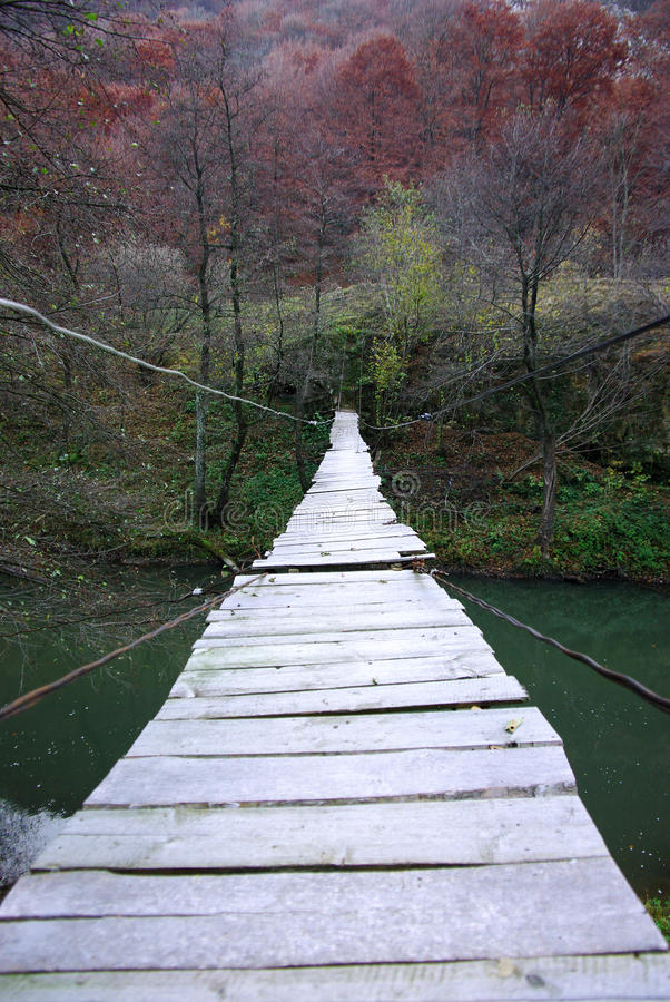 Download Ponte suspendida do fio foto de stock. Imagem de suspensão - 16866698