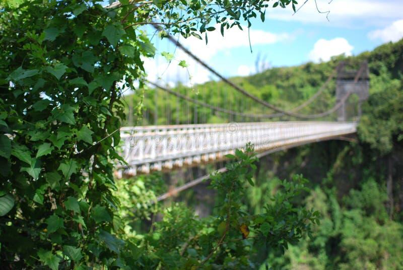 Ponte suspendida velha na costa leste de Reunion Island do la fotos de stock