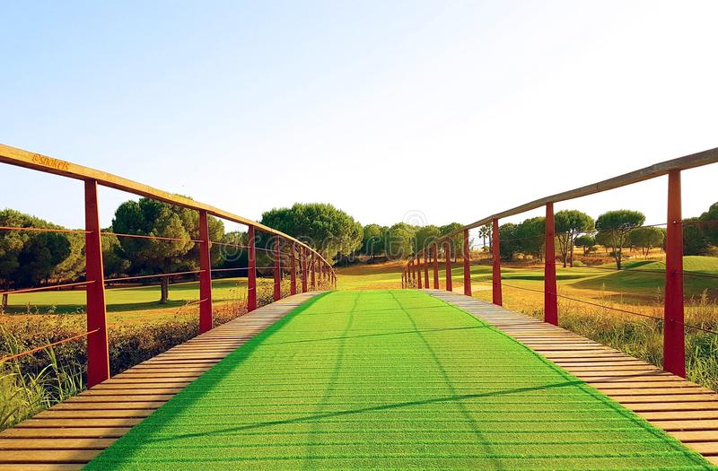 Ponte verde ideal foto de stock royalty free