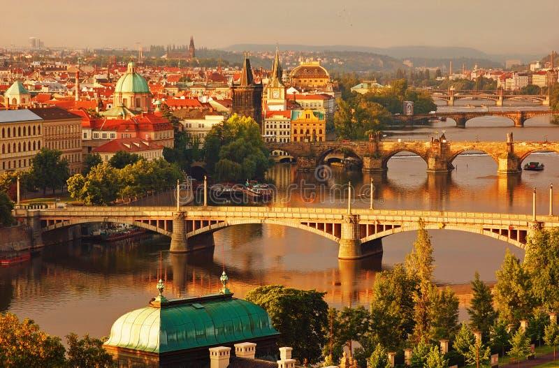 Pontes de Praga da manhã imagens de stock royalty free