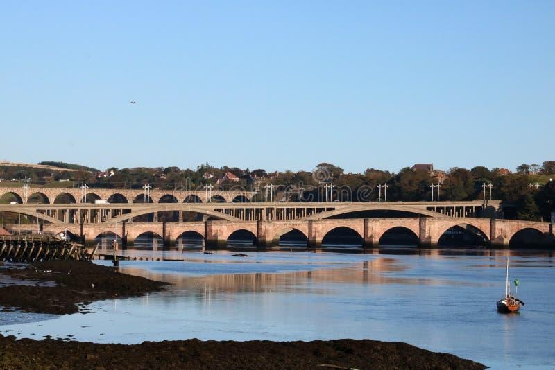 Pontes sobre a mistura de lã do rio, Berwick, Northumberland imagem de stock