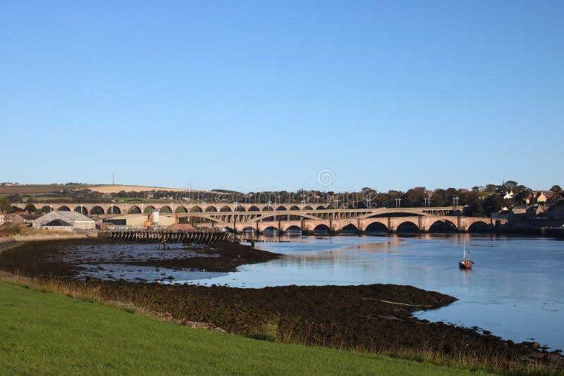 Pontes sobre a mistura de lã do rio, Berwick, Northumberland fotografia de stock royalty free