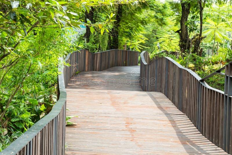 Ponti di legno ed alberi in un parco pubblico fotografia stock