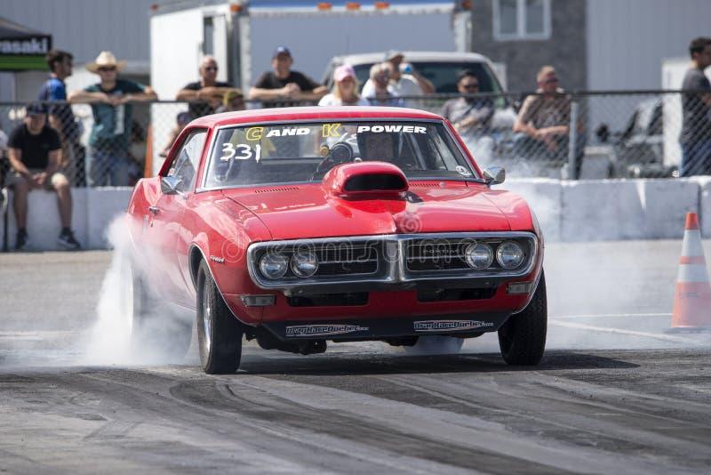 Pontiac- Firebirdburnout lizenzfreies stockfoto